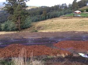 Howrah Effluent Irrigation Field